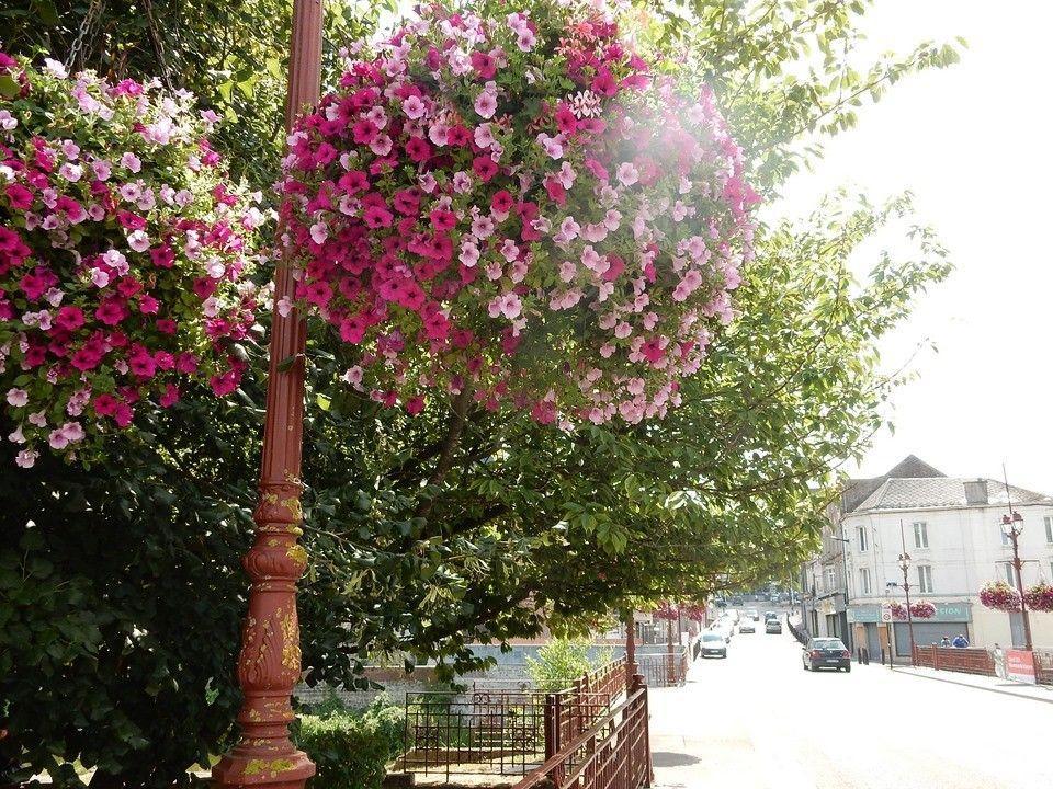 Ville fleurie plus (Copier)