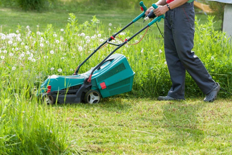 entretien espaces verts pelouse